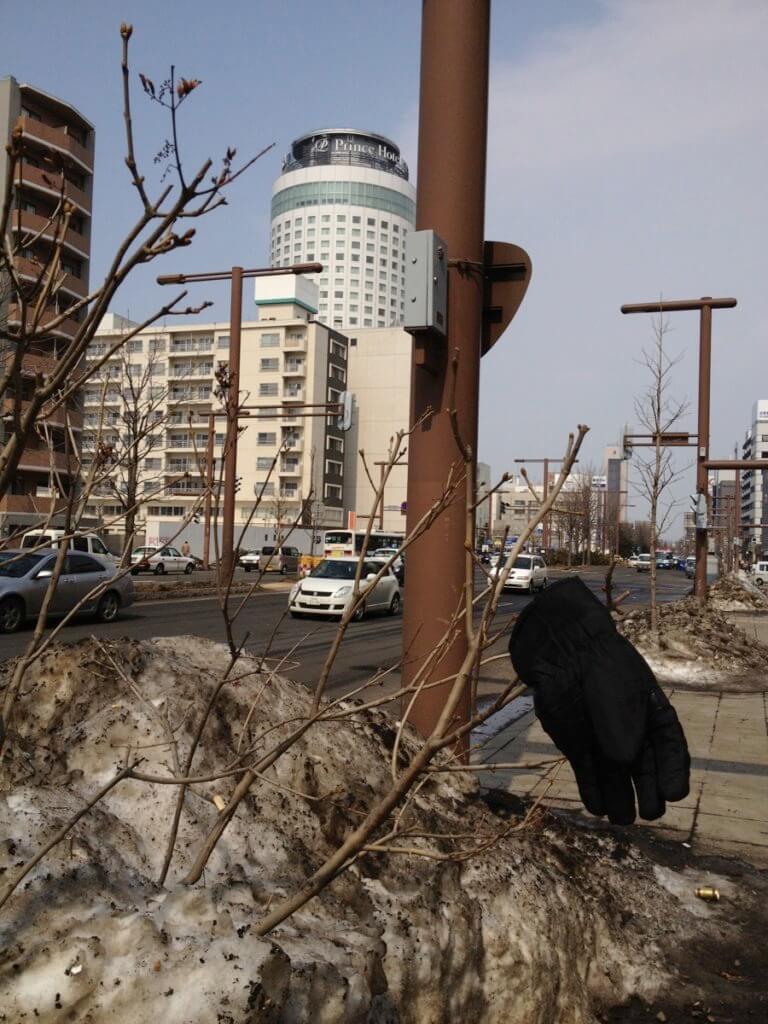 ファッション・防寒類 介入型 街路樹・植込み系の片手袋 2012年札幌市中央区