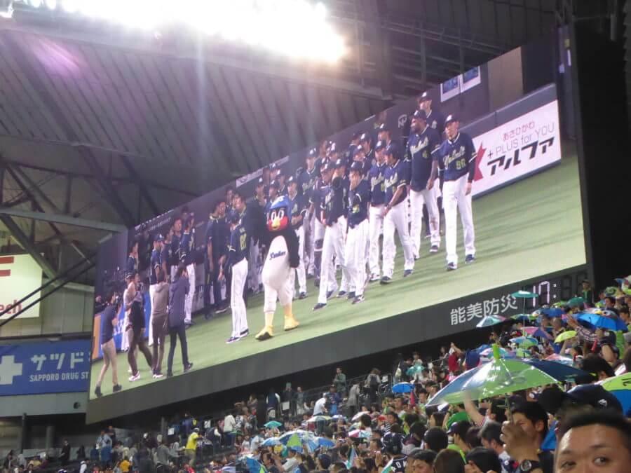 つば九郎が中心になっての東京ヤクルトスワローズ!
